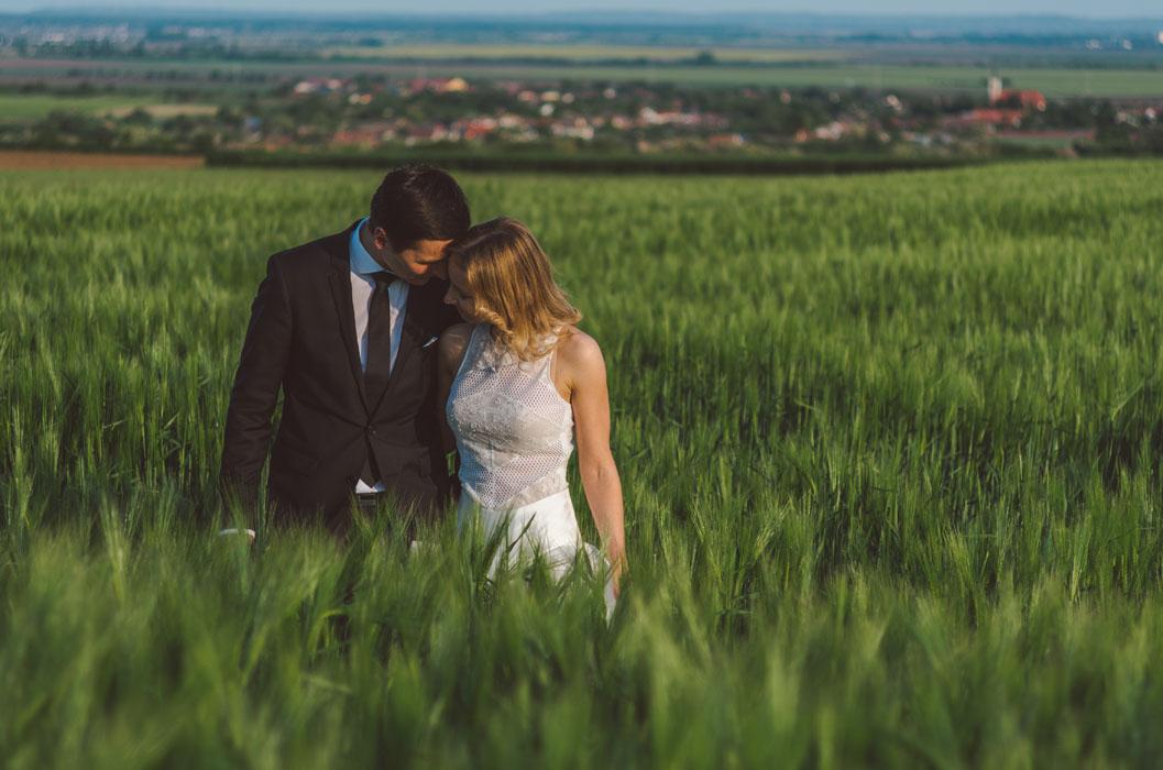 esküvői fotó búzaföld