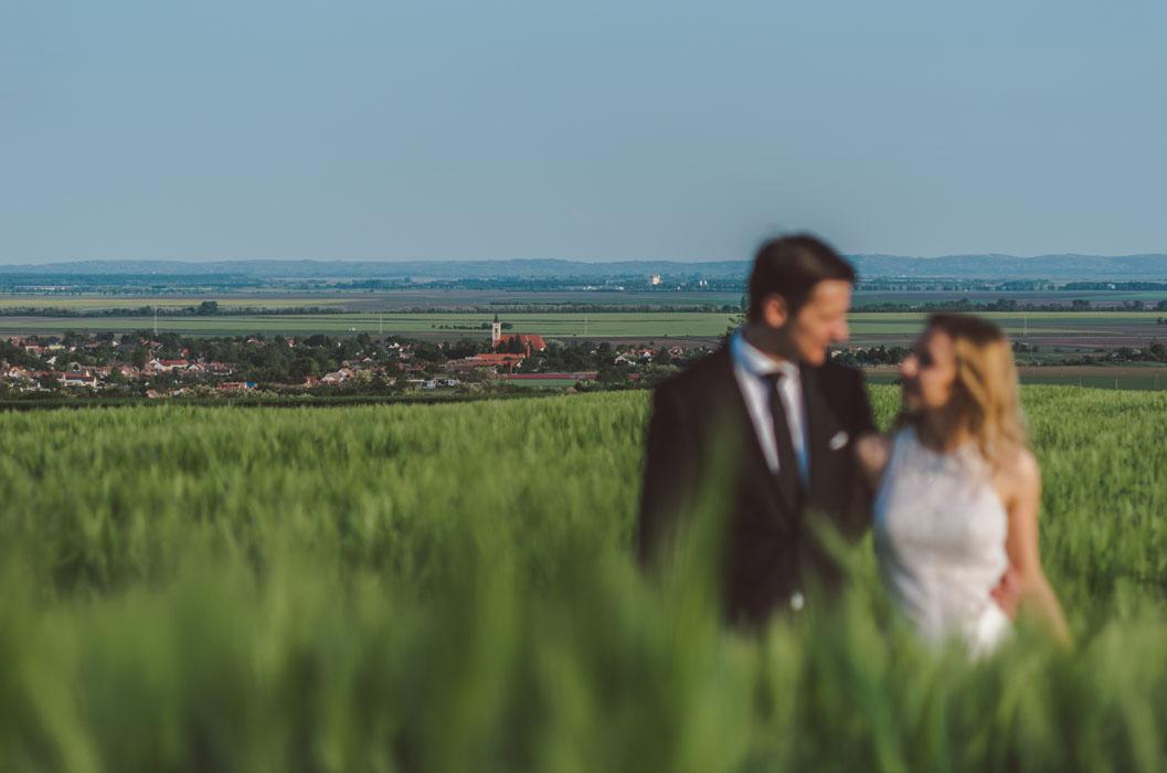 mohácsi esküvő búzaföld