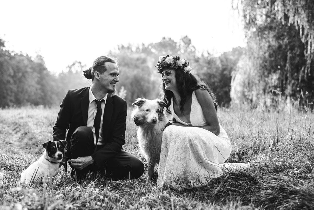 Haru Fotó esküvő fotózás border collie